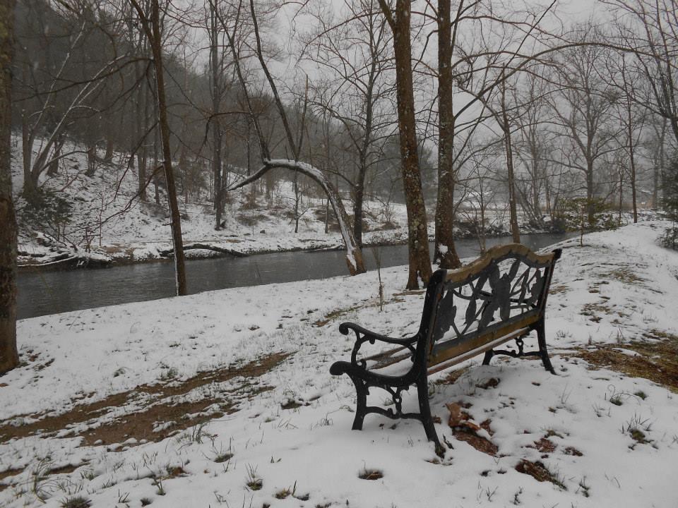 Creek-Side-in-the-Winter