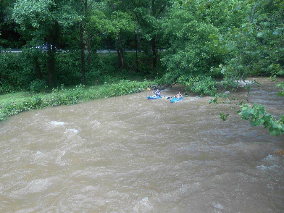 Kayaking-the-Stream-3