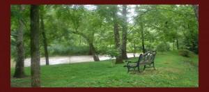 Relax on Roan Creek