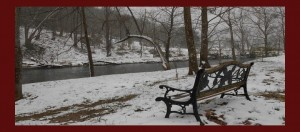 Take a Winter Picture