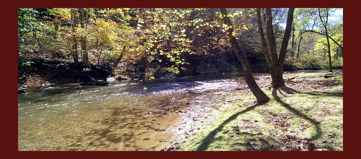 Roan Creek is a great place to try and land some trout.